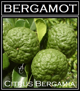 Bergamot Essential Oil ~ Certified Organic