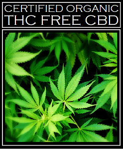 CBD Oil 625 mg ~ Certified Organic Broad Spectrum THC Free Cannabidiol